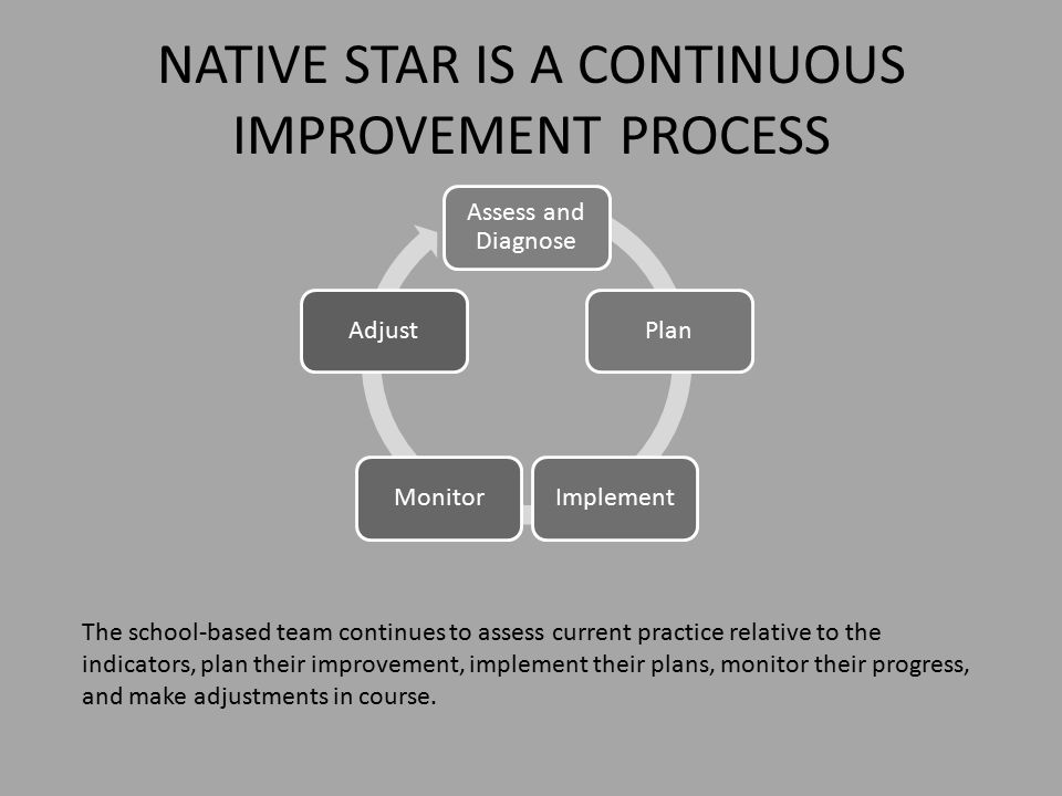 NATIVE STAR IS A CONTINUOUS IMPROVEMENT PROCESS Assess and Diagnose PlanImplementMonitorAdjust The school-based team continues to assess current practice relative to the indicators, plan their improvement, implement their plans, monitor their progress, and make adjustments in course.