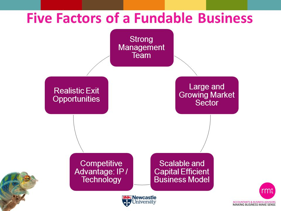 Strong Management Team Large and Growing Market Sector Scalable and Capital Efficient Business Model Competitive Advantage: IP / Technology Realistic Exit Opportunities Five Factors of a Fundable Business