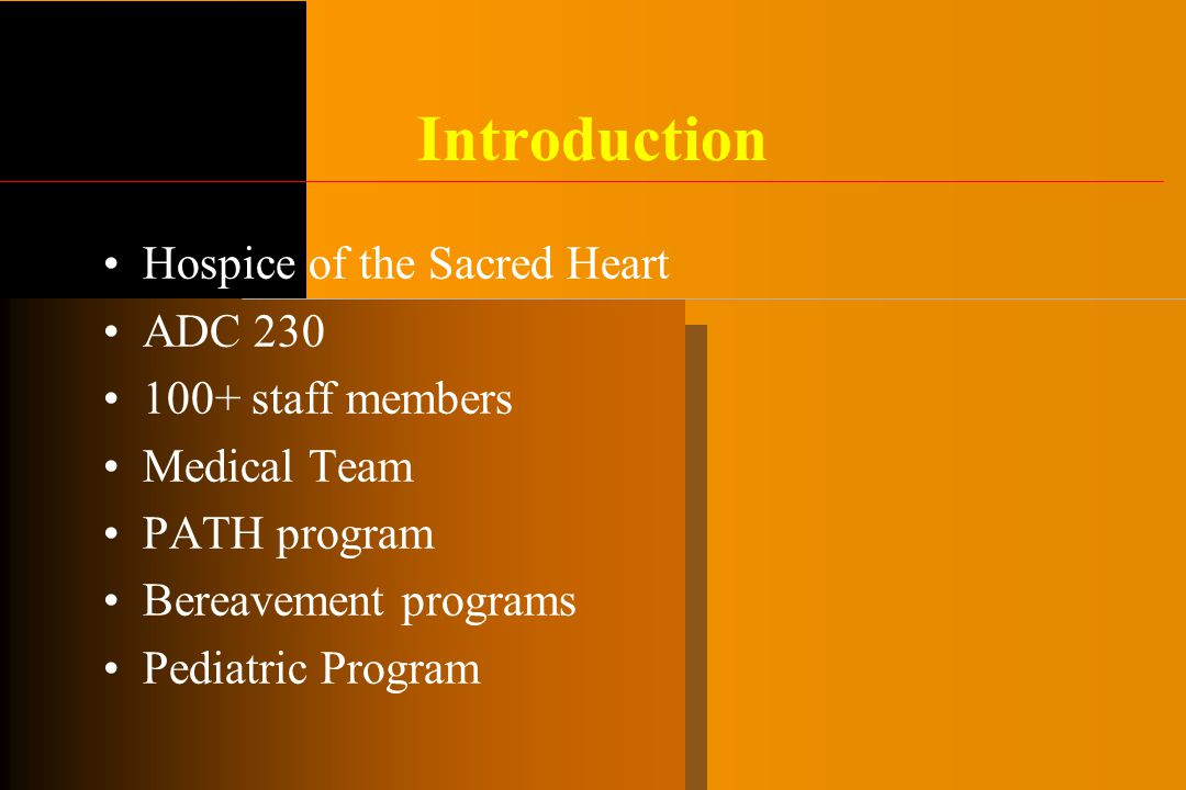 Introduction Hospice of the Sacred Heart ADC 230 100+ staff members Medical Team PATH program Bereavement programs Pediatric Program
