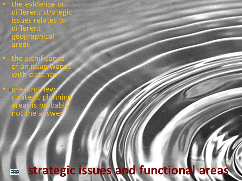 strategic issues and functional areas the evidence on different strategic issues relates to different geographical areas the significance of an issue wanes with distance creating new strategic planning areas is probably not the answer