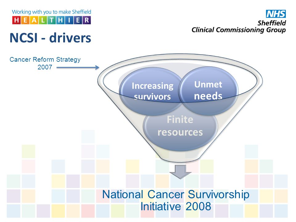 NCSI - drivers Cancer Reform Strategy 2007