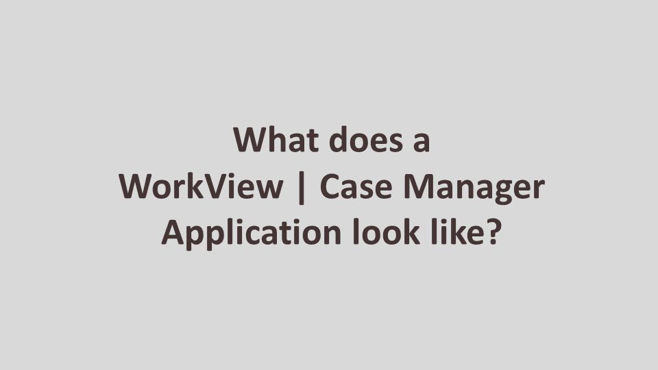What does a WorkView | Case Manager Application look like