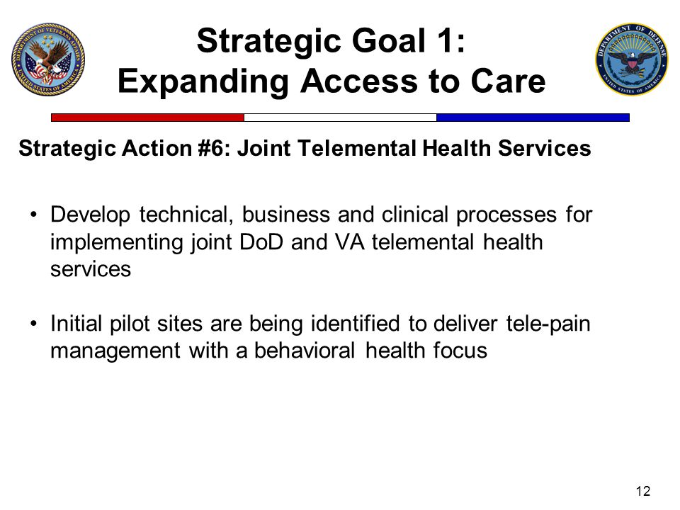 Strategic Goal 1: Expanding Access to Care Strategic Action #6: Joint Telemental Health Services 12 Develop technical, business and clinical processes