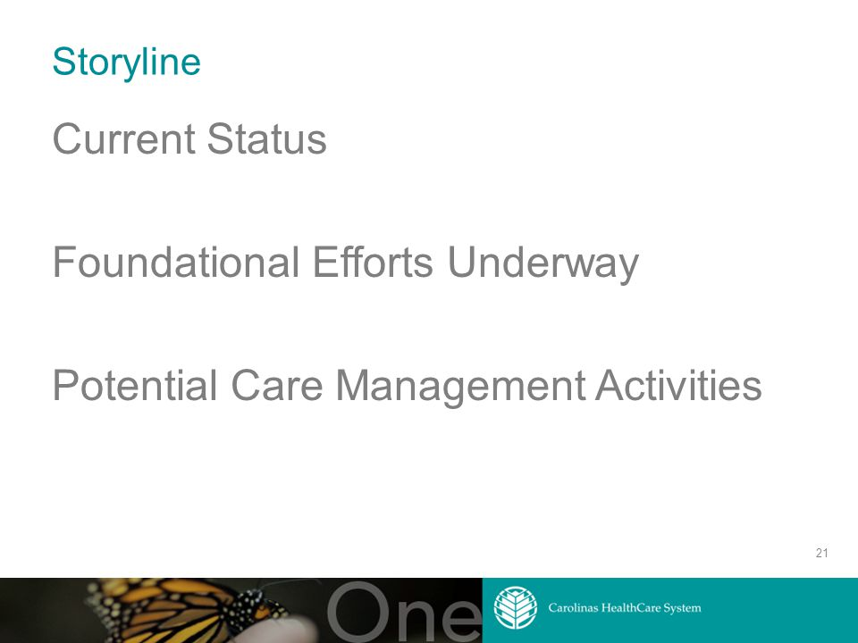 Storyline Current Status Foundational Efforts Underway Potential Care Management Activities 21