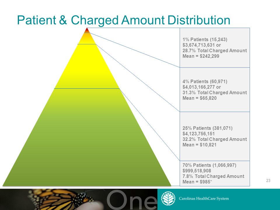Patient & Charged Amount Distribution 23 1% Patients (15,243) $3,674,713,631 or 28.7% Total Charged Amount Mean = $242,299 4% Patients (60,971) $4,013