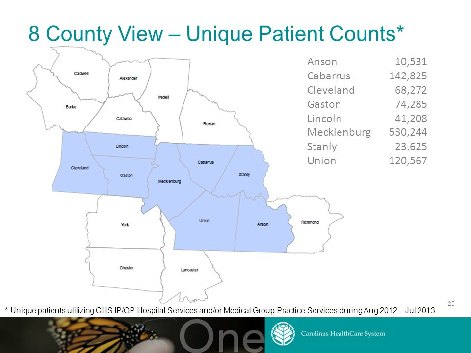 8 County View – Unique Patient Counts* 25 Anson Cabarrus Cleveland Gaston Lincoln Mecklenburg Stanly Union 10,531 142,825 68,272 74,285 41,208 530,244