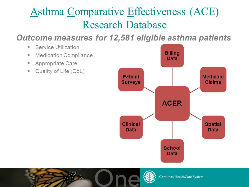 Asthma Comparative Effectiveness (ACE) Research Database Outcome measures for 12,581 eligible asthma patients  Service Utilization  Medication Compliance  Appropriate Care  Quality of Life (QoL) ACER Billing Data Medicaid Claims Spatial Data School Data Clinical Data Patient Surveys