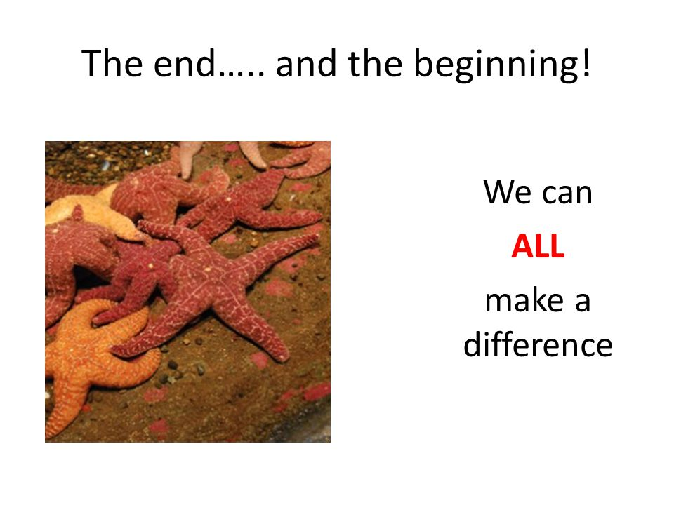 The end….. and the beginning! We can ALL make a difference