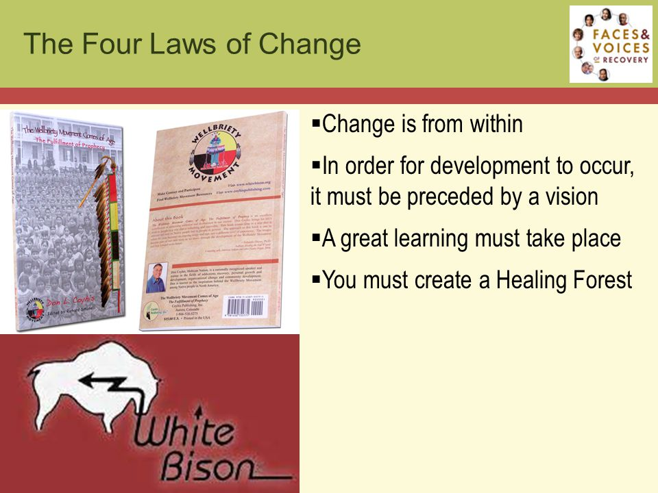  Change is from within  In order for development to occur, it must be preceded by a vision  A great learning must take place  You must create a Healing Forest The Four Laws of Change