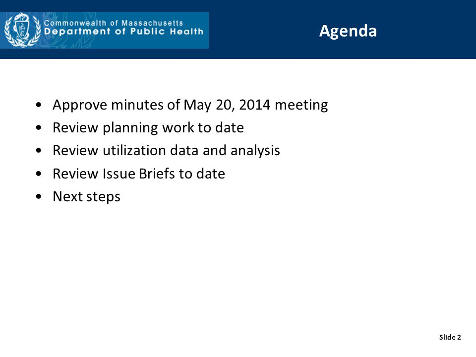 Slide 2 Agenda Approve minutes of May 20, 2014 meeting Review planning work to date Review utilization data and analysis Review Issue Briefs to date Next steps