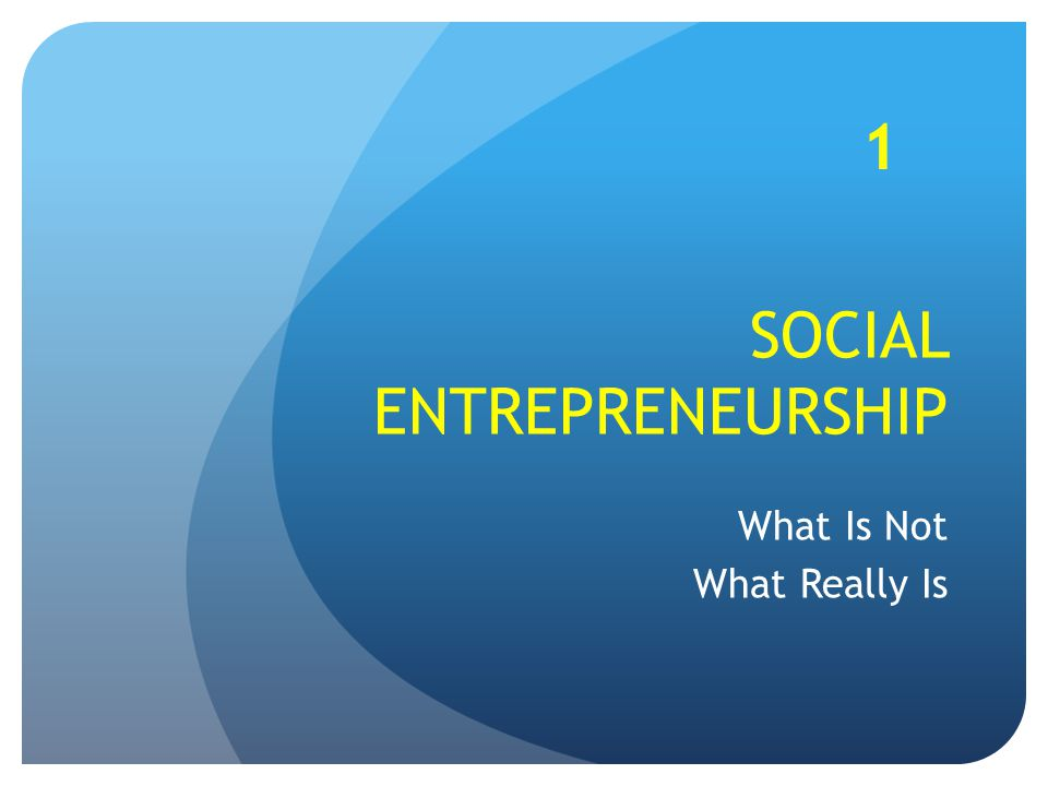 SOCIAL ENTREPRENEURSHIP What Is Not What Really Is 1