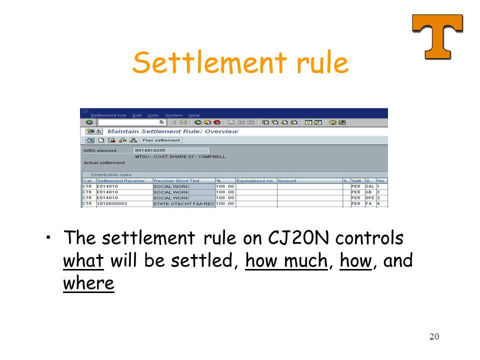 20 Settlement rule The settlement rule on CJ20N controls what will be settled, how much, how, and where