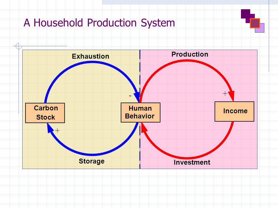 A Household Production System Carbon Stock Income - + + Exhaustion Storage Investment Production Human Behavior