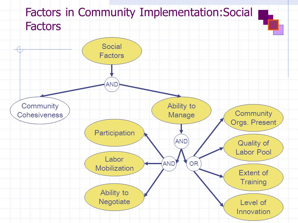 Factors in Community Implementation:Social Factors AND Participation Labor Mobilization Ability to Negotiate Quality of Labor Pool Extent of Training Community Orgs.