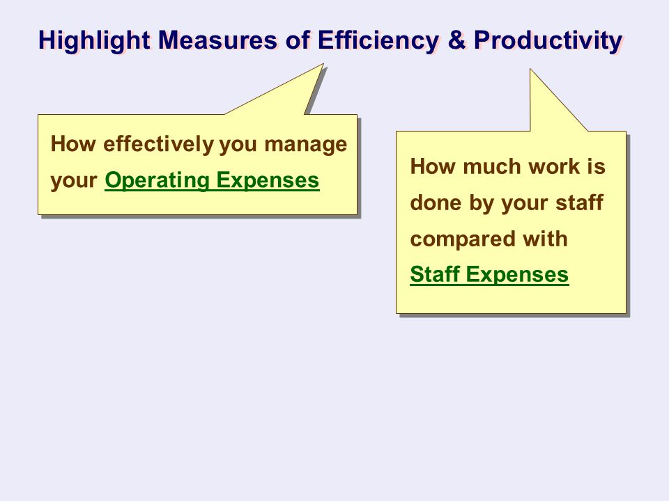 Highlight Measures of Efficiency & Productivity How effectively you manage your Operating Expenses How much work is done by your staff compared with S