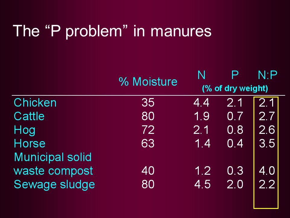 "The ""P problem"" in manures"