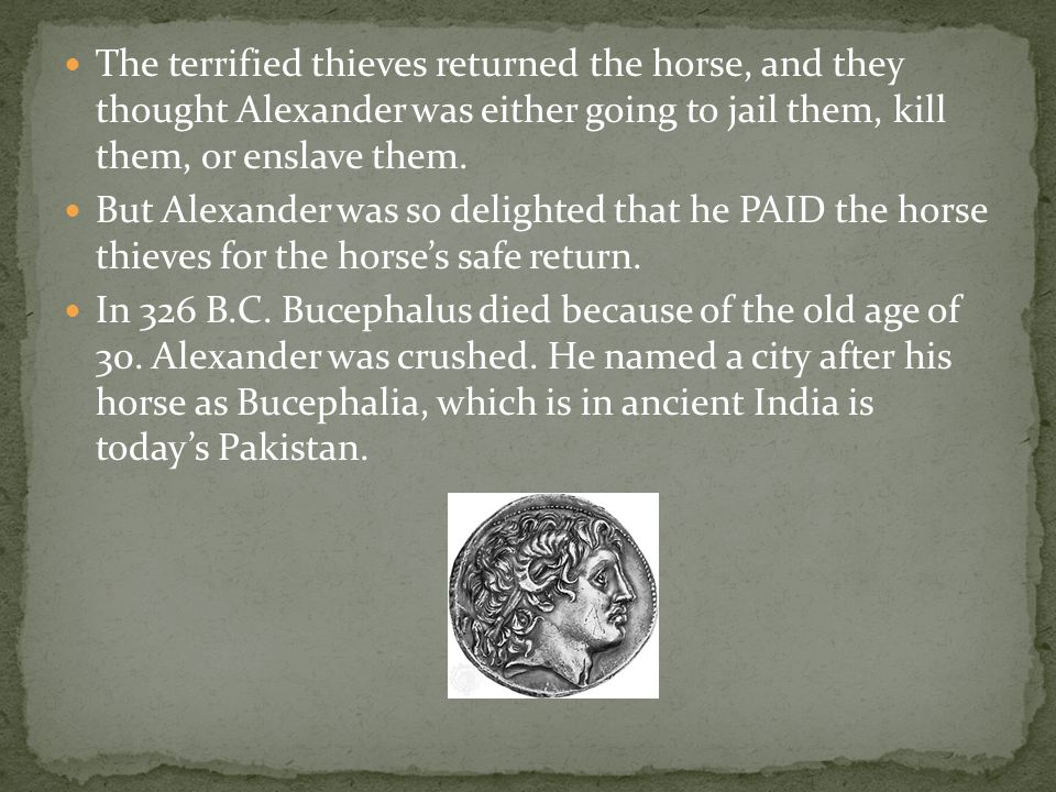 The terrified thieves returned the horse, and they thought Alexander was either going to jail them, kill them, or enslave them.