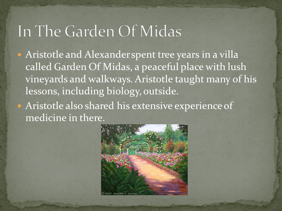 Aristotle and Alexander spent tree years in a villa called Garden Of Midas, a peaceful place with lush vineyards and walkways. Aristotle taught many o