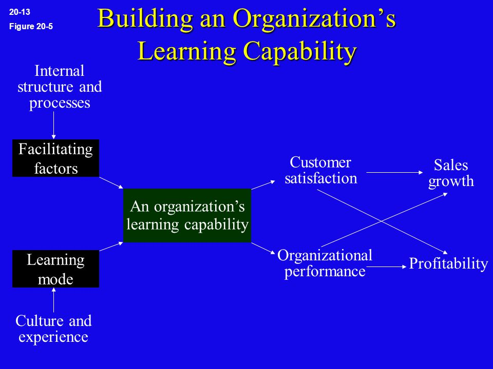 Building an Organization's Learning Capability 20-13 Figure 20-5 Facilitating factors Learning mode Culture and experience Internal structure and processes An organization's learning capability Customer satisfaction Organizational performance Sales growth Profitability