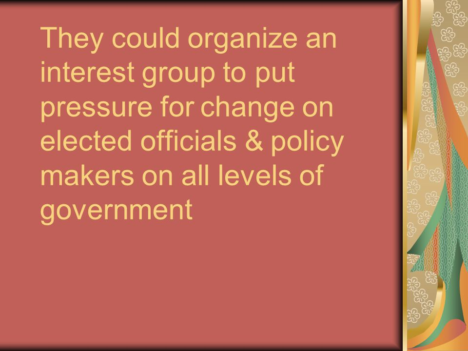 They could organize an interest group to put pressure for change on elected officials & policy makers on all levels of government