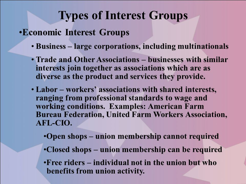 Types of Interest Groups Economic Interest Groups Business – large corporations, including multinationals Trade and Other Associations – businesses wi