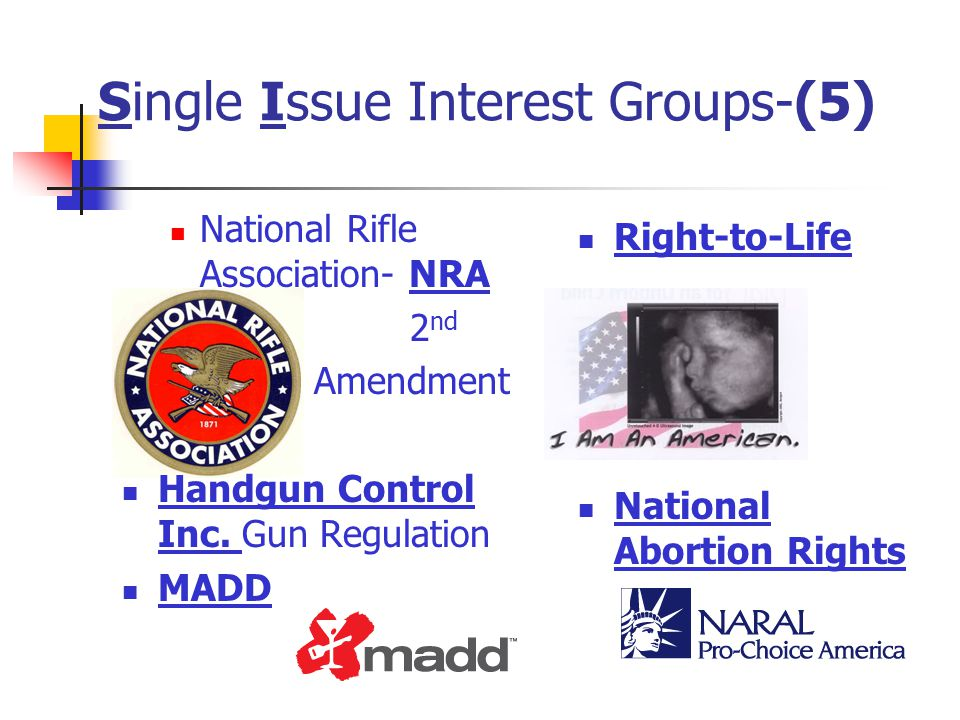 Single Issue Interest Groups-(5) National Rifle Association- NRA 2 nd Amendment Handgun Control Inc. Gun Regulation MADD Right-to-Life National Aborti