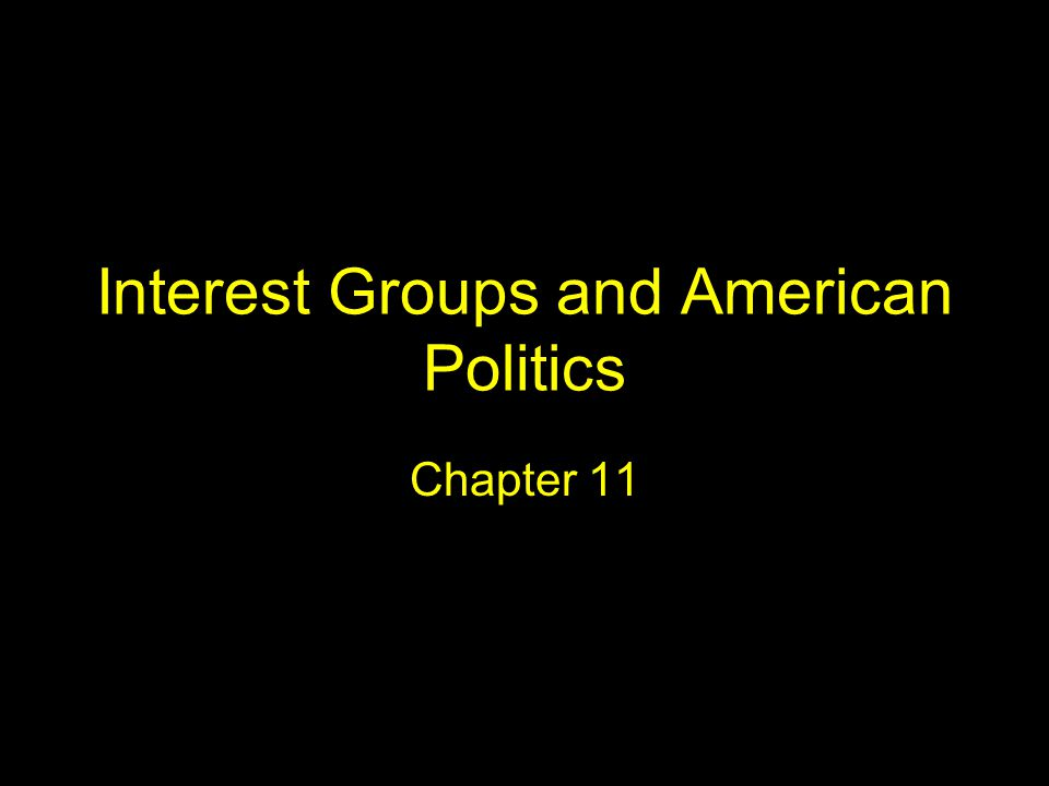 Interest Groups and American Politics Chapter 11