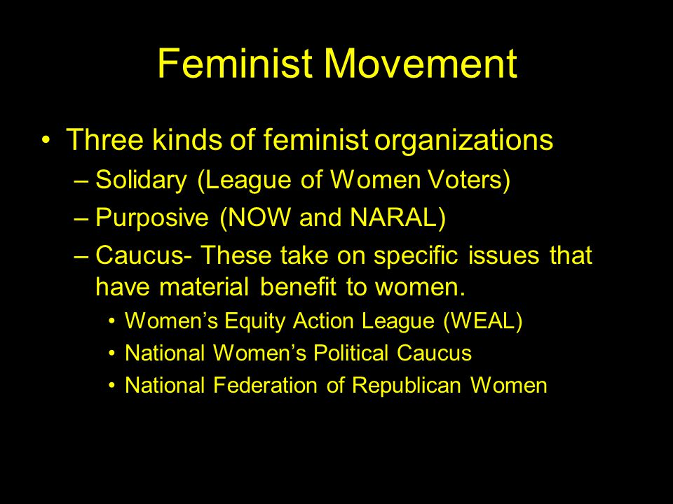 Feminist Movement Three kinds of feminist organizations –Solidary (League of Women Voters) –Purposive (NOW and NARAL) –Caucus- These take on specific