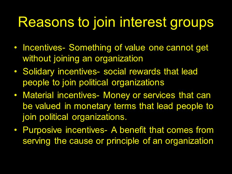What is the bias in American politics and interest groups.