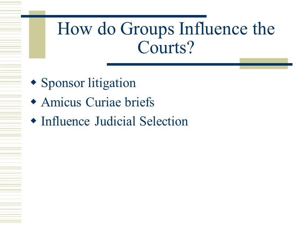 How do Groups Influence the Courts.