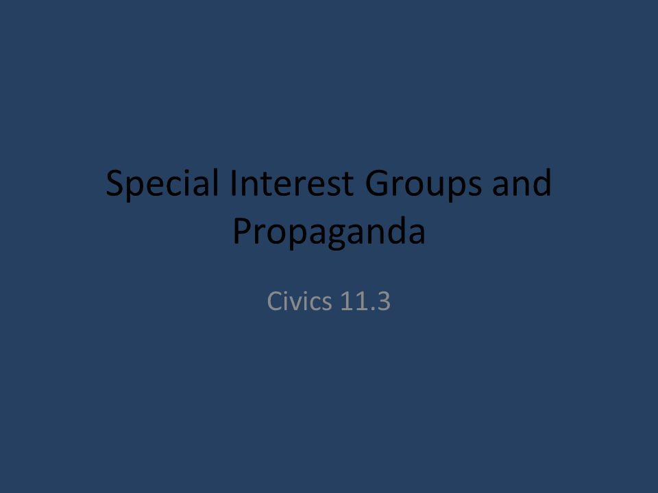 Special Interest Groups and Propaganda Civics 11.3