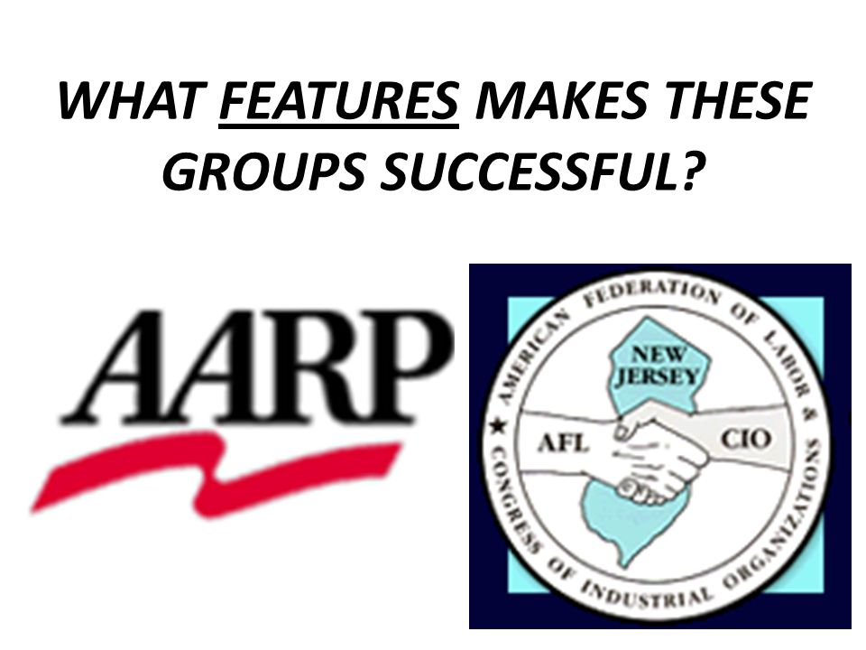 WHAT FEATURES MAKES THESE GROUPS SUCCESSFUL?