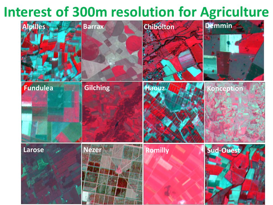 Interest of 300m resolution for Agriculture