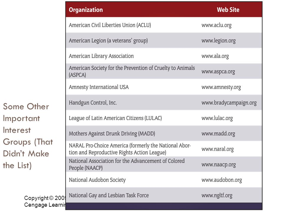 Copyright © 2009 Cengage Learning 5 Some Other Important Interest Groups (That Didn't Make the List)