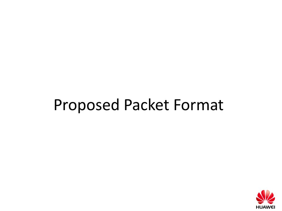 Proposed Packet Format