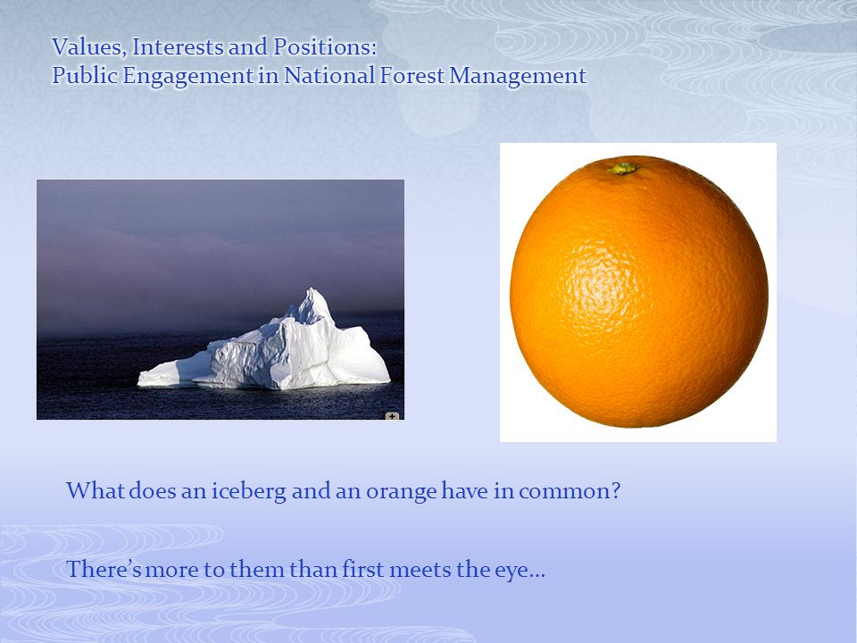 What does an iceberg and an orange have in common There's more to them than first meets the eye…