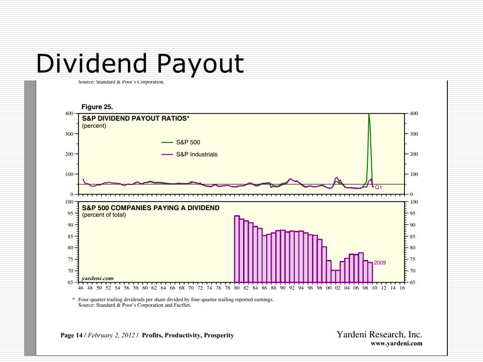 28 Dividend Payout