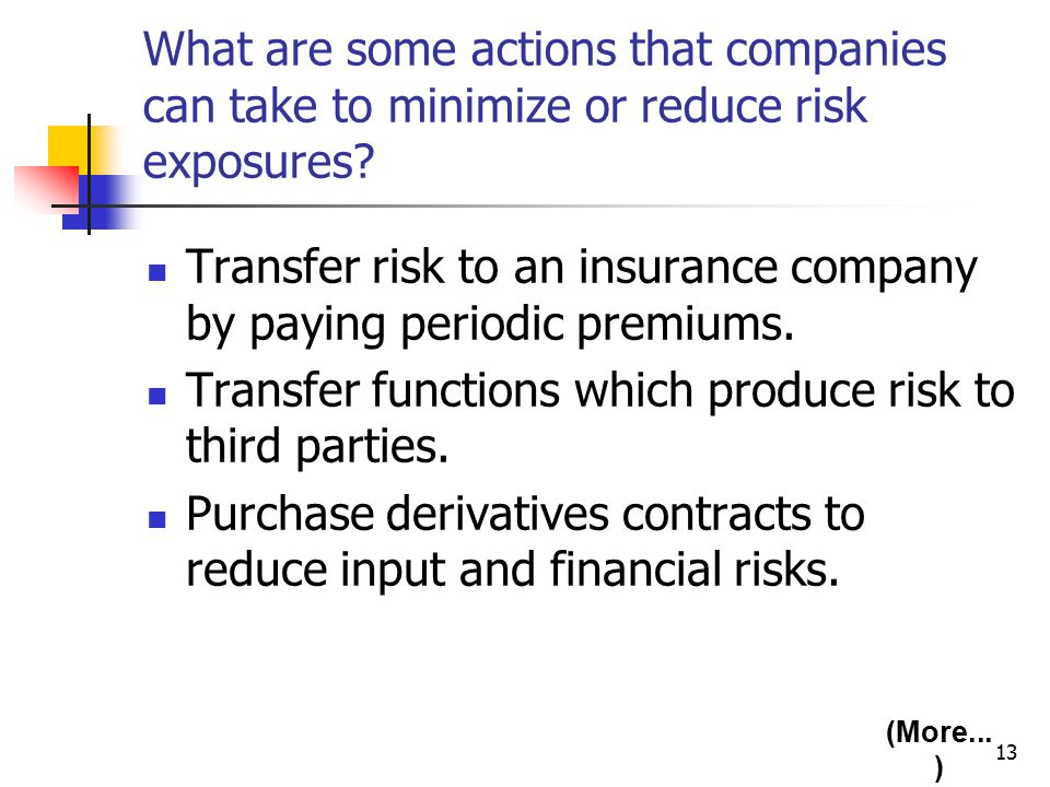 13 What are some actions that companies can take to minimize or reduce risk exposures.
