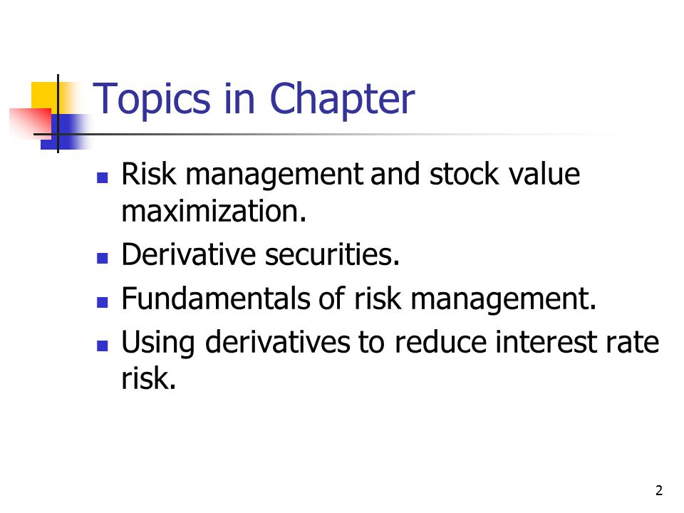 2 Topics in Chapter Risk management and stock value maximization.