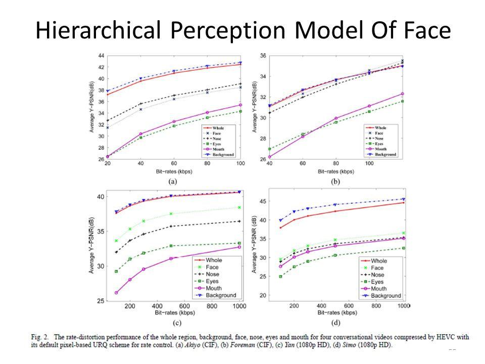 Hierarchical Perception Model Of Face 11