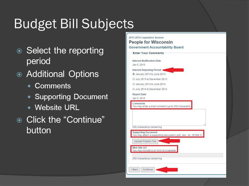 Budget Bill Subjects  Select the reporting period  Additional Options Comments Supporting Document Website URL  Click the Continue button