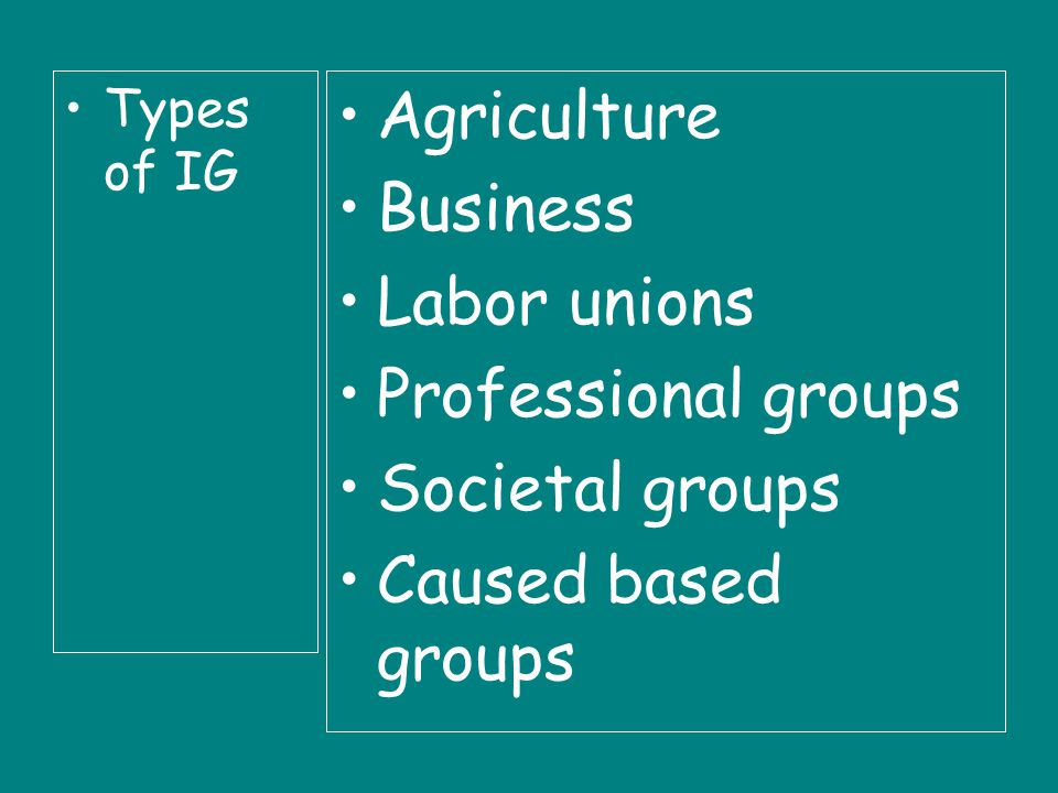 Types of IG Agriculture Business Labor unions Professional groups Societal groups Caused based groups