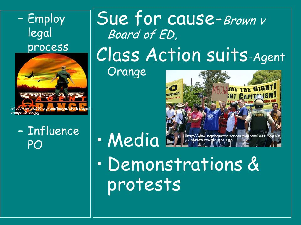 –Employ legal process –Influence PO Sue for cause- Brown v Board of ED, Class Action suits -Agent Orange Media Demonstrations & protests http://www.vva885.org/cms/images/stories/agent- orange-10-blk.jpg http://www.stopthenorthamericanunion.com/DotsImages/M EChAProtestWithSMACs.jpg