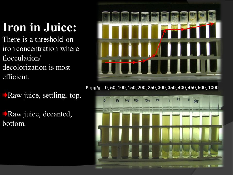 Fe  g/g: 0, 50, 100, 150, 200, 250, 300, 350, 400, 450, 500, 1000 Iron in Juice: There is a threshold on iron concentration where flocculation/ decolorization is most efficient.