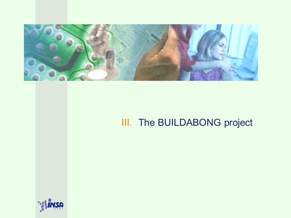 III. The BUILDABONG project