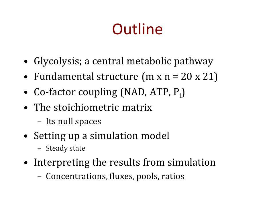 Glycolysis: 10-infinity mins Tiled Phase Portrait: pools