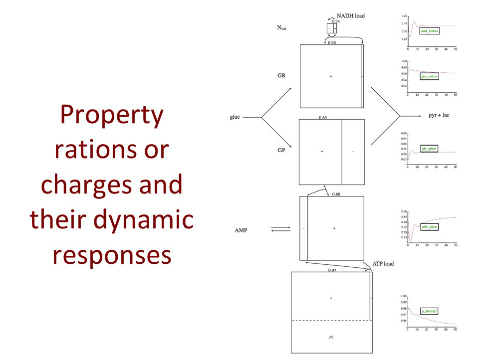 Property rations or charges and their dynamic responses
