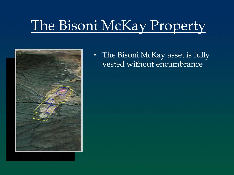 The Bisoni McKay asset is fully vested without encumbrance