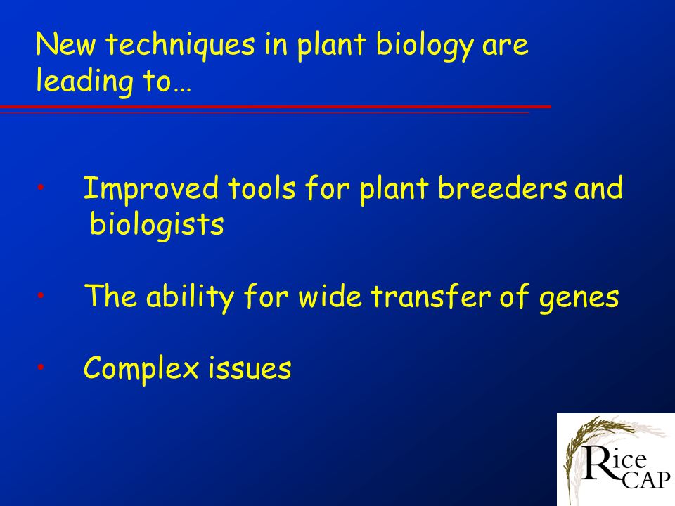 New techniques in plant biology are leading to… Improved tools for plant breeders and biologists The ability for wide transfer of genes Complex issues