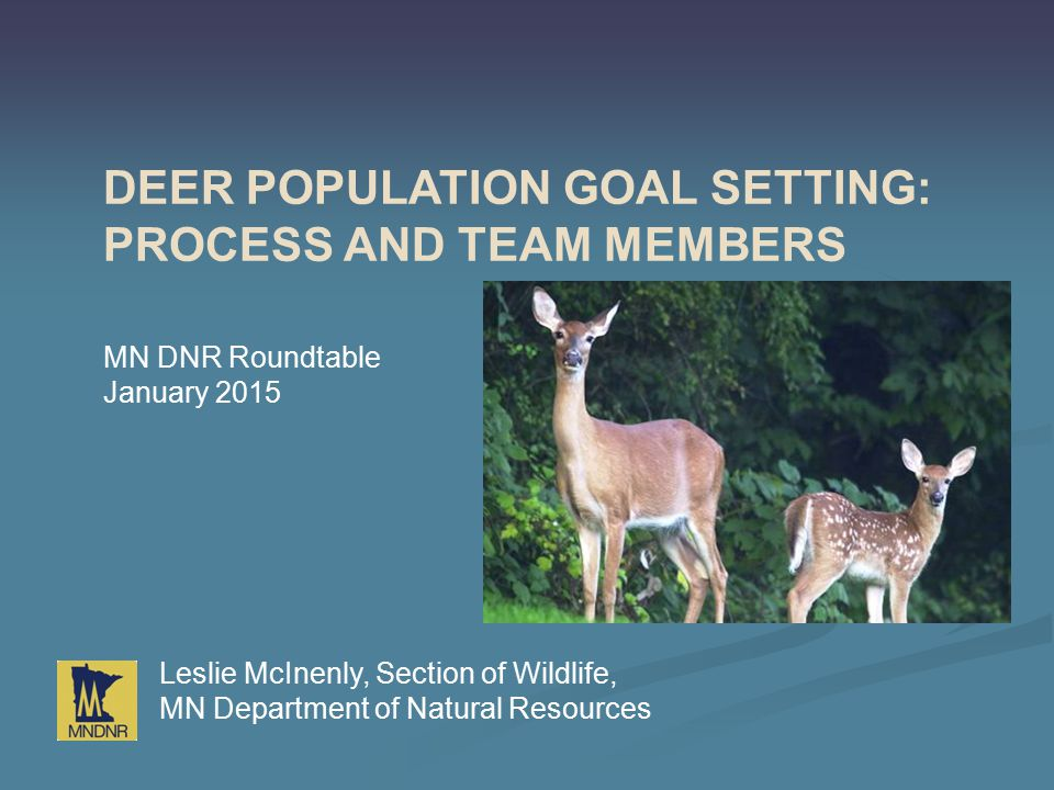 DEER POPULATION GOAL SETTING: PROCESS AND TEAM MEMBERS Leslie McInenly, Section of Wildlife, MN Department of Natural Resources MN DNR Roundtable Janu